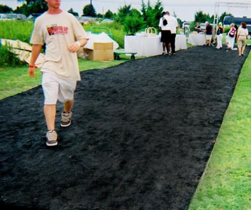 Where to find Black Astroturf in Mount Vernon