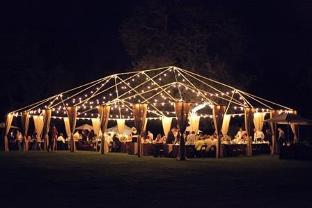 Cafe 54 Foot String Lighting Delivered Als Mount Vernon